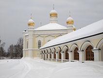 Vrouwelijk klooster novo-Tikhvin. Royalty-vrije Stock Afbeeldingen