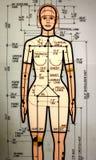 Vrouwelijk neerstortingsmodel Stock Afbeeldingen