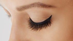 Vrouwelijk oog met extreme lange valse wimpers Wimperuitbreidingen, samenstelling, schoonheidsmiddelen, schoonheid royalty-vrije stock foto