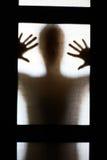 Vrouwelijk Silhouet Royalty-vrije Stock Afbeelding