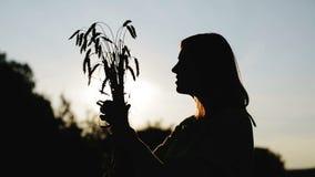 Vrouwelijk silhouet stock videobeelden