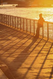 Vrouwelijk silhouet die zich tegen de omheining en thame de rivier bevinden bij Stock Fotografie