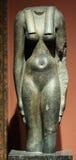 Vrouwelijk Torso Stock Fotografie