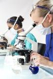 Vrouwelijk Wetenschappelijk Onderzoeksteam in een Laboratorium Stock Fotografie