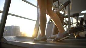 Vrouwelijke atletenbenen die langzaam tredmolenmachine, cardiooefening, duurzaamheid lopen stock footage
