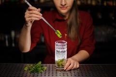 Vrouwelijke barman die een blad van verse munt toevoegen aan een rietsuikerverstand stock afbeeldingen