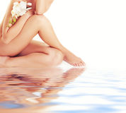 Vrouwelijke benen Royalty-vrije Stock Afbeelding