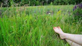 Vrouwelijke benen met een rode pedicure op groen gras stock video