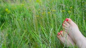 Vrouwelijke benen met een rode pedicure op groen gras stock footage