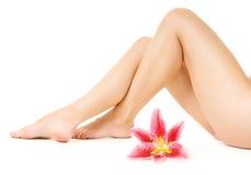 Vrouwelijke benen met roze lelie Stock Fotografie