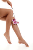 Vrouwelijke benen met roze orchidee Royalty-vrije Stock Afbeelding