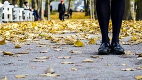 Vrouwelijke benen in zwarte laarzen stock fotografie
