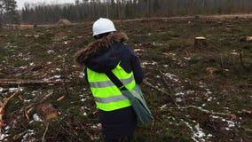 Vrouwelijke bosbouwinspecteur die tussen felled bomen lopen stock videobeelden
