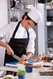 Vrouwelijke chef-kok die een ui snijdt Royalty-vrije Stock Fotografie