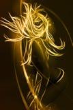 Vrouwelijke danser met haar in motie Royalty-vrije Stock Afbeelding