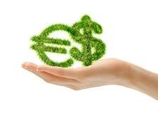 Vrouwelijke de euro en de dollartekens van de handholding Royalty-vrije Stock Foto's