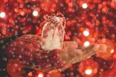 Vrouwelijke de vakantiedecoratie van de handholding met kleine Kerstboom Stock Foto's