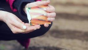 Vrouwelijke de wortelzaden van landbouwersPlanting stock video