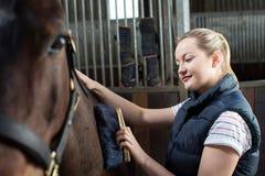 Vrouwelijke Eigenaar in Stabiel Verzorgend Paard met Borstel stock fotografie