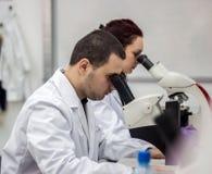 Vrouwelijke en mannelijke medische of wetenschappelijke onderzoekers of vrouwen en m Stock Afbeeldingen
