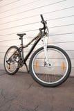 Vrouwelijke fiets stock afbeeldingen