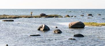 Vrouwelijke fotograaf die een foto op het eiland met twee zwanen nemen Panoramisch beeld van het overzees met rotsen stock foto's