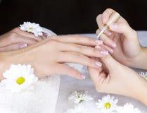 Vrouwelijke Franse manicure Royalty-vrije Stock Foto's