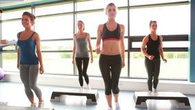 Vrouwelijke groep die aerobics doen stock videobeelden