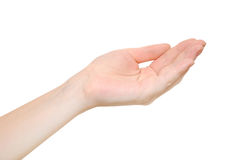 Vrouwelijke hand Stock Afbeeldingen
