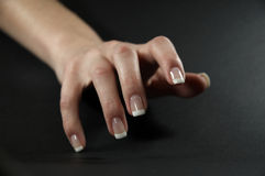 Vrouwelijke hand 3 Stock Foto