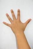 Vrouwelijke hand Royalty-vrije Stock Afbeelding