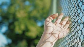 Vrouwelijke hand die zich langs de oppervlakte van net bewegen Wapen van jonge vrouw wat betreft de omheining van de metaaldraad  stock video
