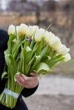 Vrouwelijke hand met een boeket van tulpen Stock Afbeeldingen