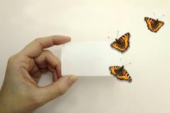 Vrouwelijke hand met een witte kaart en de vlinders die op wit vliegen Royalty-vrije Stock Afbeeldingen