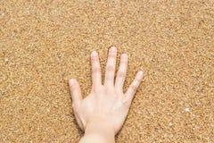 Vrouwelijke hand op het zand bij het strand royalty-vrije stock fotografie
