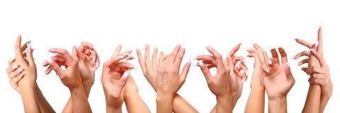 Vrouwelijke handen royalty-vrije stock afbeeldingen