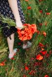 Vrouwelijke handen die een boeket van rode papaver houden stock foto
