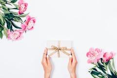 Vrouwelijke handen die gift dichtbijgelegen tot bloei komende pioenen houden Stock Afbeelding