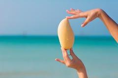 Vrouwelijke handen die mango op overzeese achtergrond houden stock fotografie