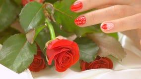 Vrouwelijke handen en rozen, langzame motie stock videobeelden