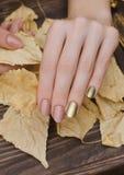 Vrouwelijke handen met het gouden ontwerp van de kameleonspijker Stock Afbeelding