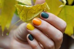 Vrouwelijke handen met het ontwerp van de kleurenspijker royalty-vrije stock afbeeldingen