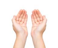 Vrouwelijke handenpalmen gehouden onderworpen Stock Afbeelding