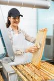 Vrouwelijke Imker Brushing Honeycomb Stock Foto