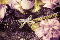 Vrouwelijke kanten onderkledingsachtergrond Stock Foto's