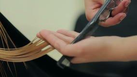 Vrouwelijke kappergreep ter beschikking tussen vingershaarlok, kam en schaarclose-up stock footage