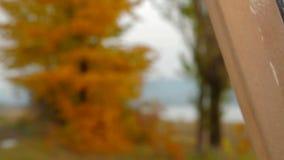 Vrouwelijke Kunstenaar Creating een Beeld van de Herfst stock video
