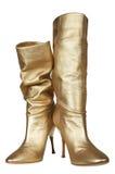 Vrouwelijke laarzen Stock Afbeeldingen