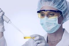 Vrouwelijke laboratoriumtechnicus met pipet en vloeistof Stock Fotografie