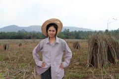 Vrouwelijke landbouwer zich met met de handen in de zij bevinden en het lidmaat die van tapiocainstallatie die samen de stapel in royalty-vrije stock foto